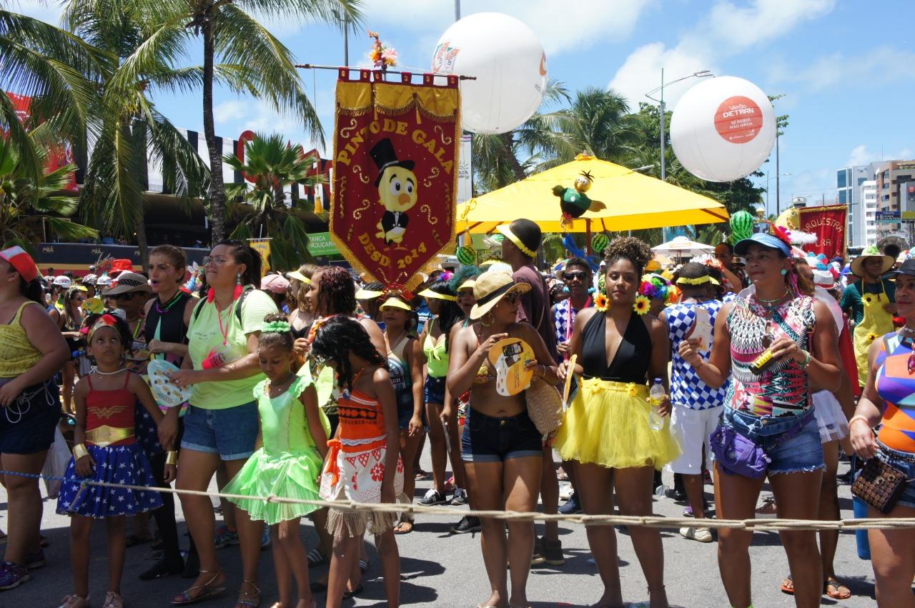 Fantasias de foliões são destaque nas prévias de carnaval em Maceió.